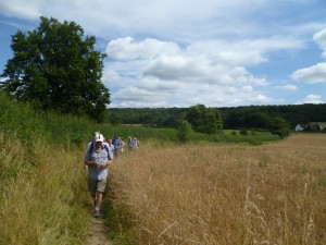 Chilterns walk